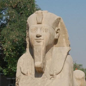 Sphinx of Ramses II at Memphis